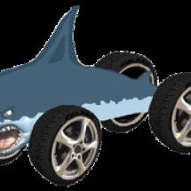 Shark_transparent_300x175